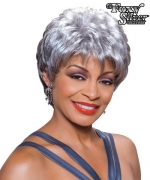 Foxy Silver Synthetic Full Wig - DIANE